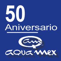 Logo 50 Aniversario